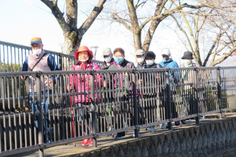 人道橋を渡るうさぎさんグループです
