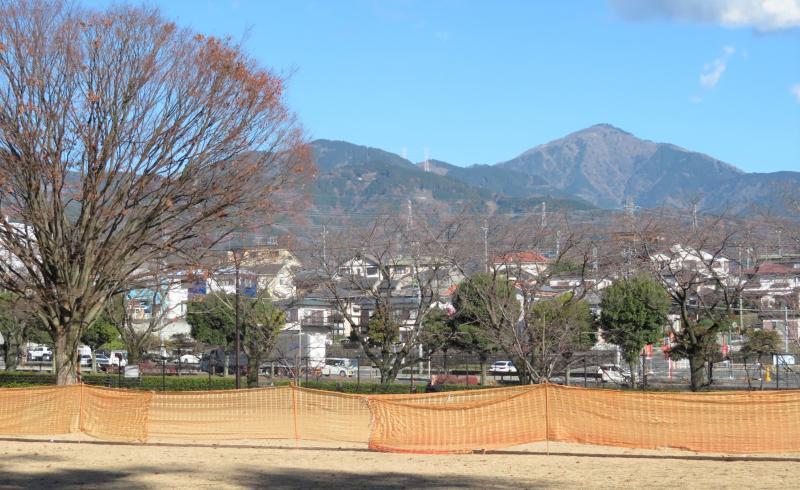 ピクニック広場から大山を望む
