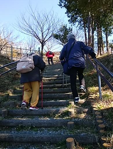 こがめさんグループは安全に階段を上ります