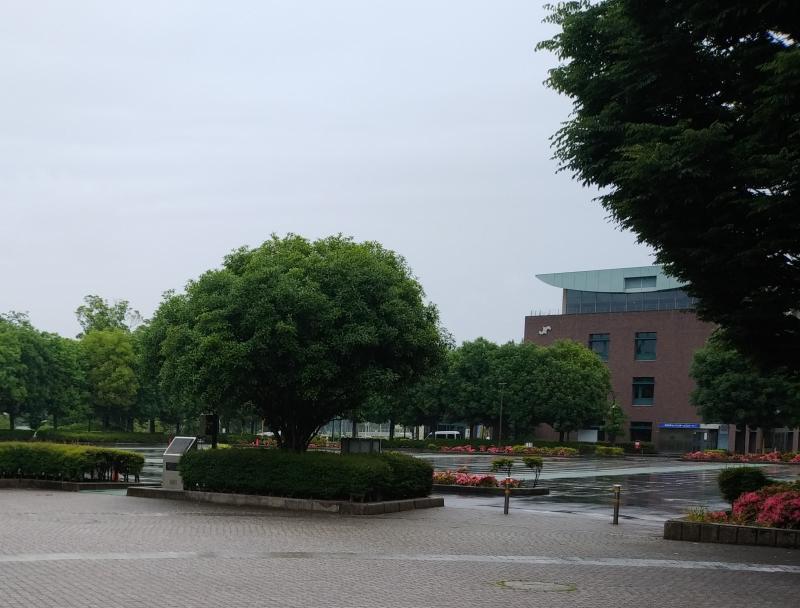 雨天中止・体育館前