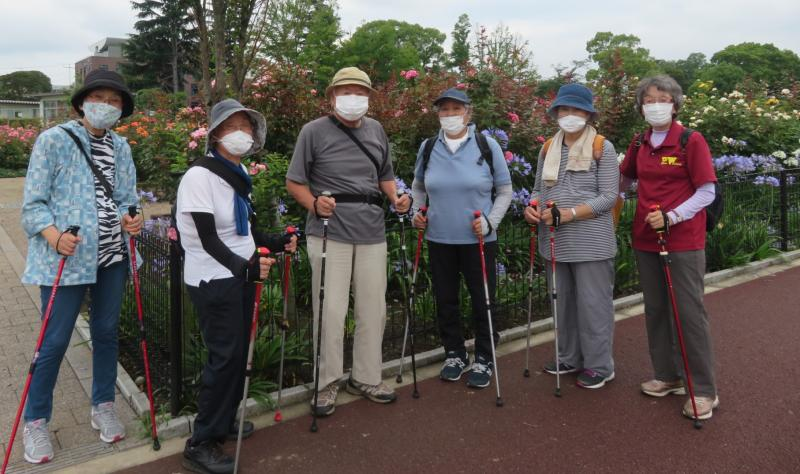 こがめさんグループ、アガパンサスの花の前で☻